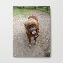 Why the long face? Metal Print
