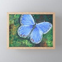 Blue Morpho Butterfly Framed Mini Art Print
