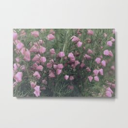 summergrass two Metal Print