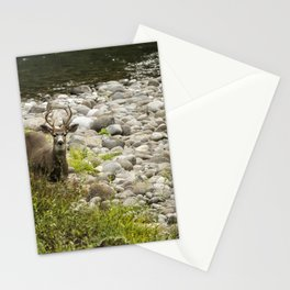 Handsome Deer on an Island No. 2 Stationery Cards