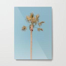 One Palm Tree III / Venice, California Metal Print