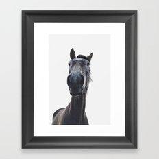 Simply horse Framed Art Print