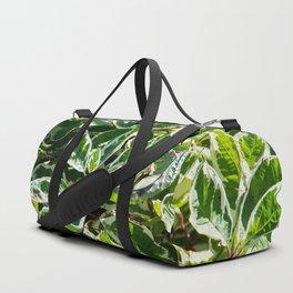 Red-Bark Dogwood Shrub Duffle Bag