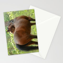 Beautiful Mare Stationery Cards