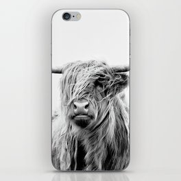 portrait of a highland cattle iPhone Skin