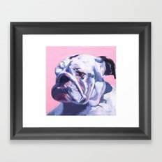 BuLLDOG (Zoe) Framed Art Print