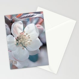 Spring 131 Stationery Cards