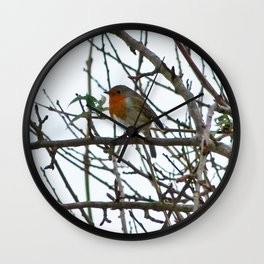 The Solitary Robin Wall Clock