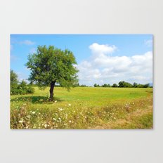 Alto Molise, countryside Canvas Print