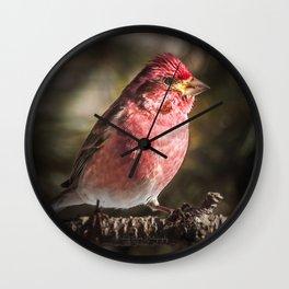 Purple Finch Wall Clock