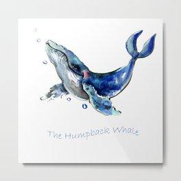 Whale Artowrk, Humpback Whale Metal Print