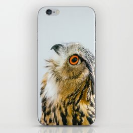 Eurasian Eagle Owl iPhone Skin