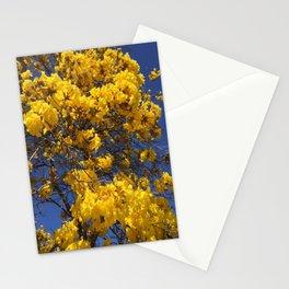 Beautiful tree in Santa Paula, CA Stationery Cards