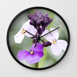 Dame's Rocket, Wild Phlox Wall Clock