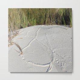Watercolor Footprints, Mole 02, Janes Island, Maryland Metal Print