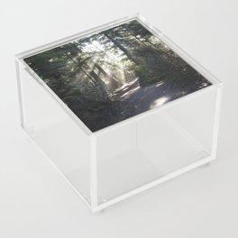 Forest Path Acrylic Box