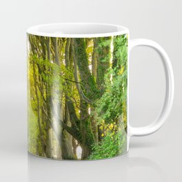 Sunset in the Alley,Clonakilty Coffee Mug