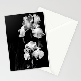 White Iris, Messenger Between Heaven And Earth Stationery Cards