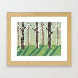 Forrest Shadows Framed Art Print
