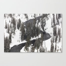 Yellowstone National Park - Lewis River 2 Canvas Print