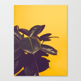 Mid Century Modern Yellow Background Color Pop Minimalist Plant Leaves Canvas Print
