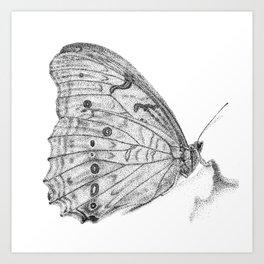 Pale Butterfly Art Print