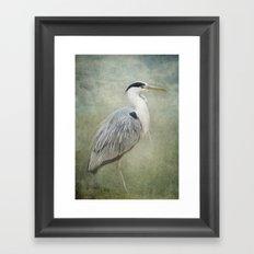Cool Heron Framed Art Print