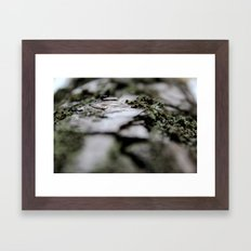 with a tree Framed Art Print