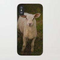 lamb iPhone & iPod Cases featuring Lamb by Guna Andersone & Mario Raats - G&M Studi