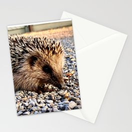 Hedgehog in Fall Stationery Cards