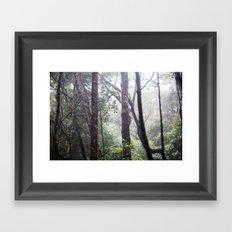 LUNA Framed Art Print