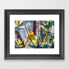 Sweet Yellow Warbler Framed Art Print