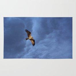 Osprey In Flight Rug