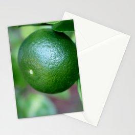 Cam Sanh Stationery Cards