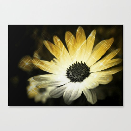Sparkle Daisies Canvas Print