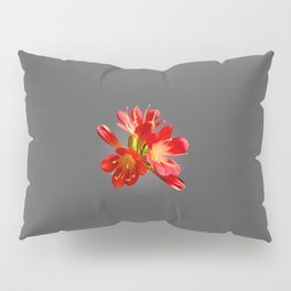 Red Natal Lily Pillow Sham