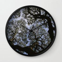 Oak Tree Reaching For The Sky Wall Clock