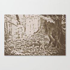 Knotted Canvas Print