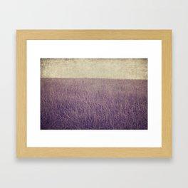Purple field Framed Art Print
