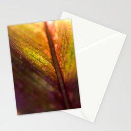 Soulful Stationery Cards