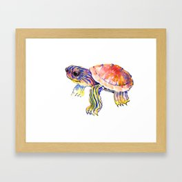 Cute Baby Turtle Framed Art Print