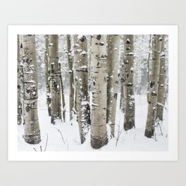 Forest of Serenity Art Print