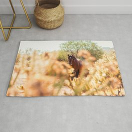Wild Horse and Cholla Rug