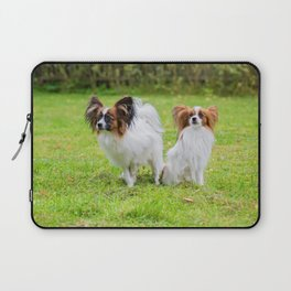 Outdoor portrait of a papillon purebreed dogs on the grass Laptop Sleeve