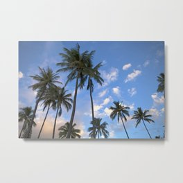 HAWAII PALMS Metal Print