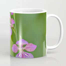 Beauty in nature, wildflower Gladiolus illyricus Coffee Mug