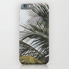 palm treee iPhone 6s Slim Case