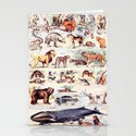 Vintage Antique Wildlife Encyclopedia Print by draperandharlow