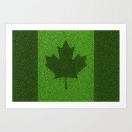 Grass flag Canada / 3D render of Canadian flag grown from grass Art Print