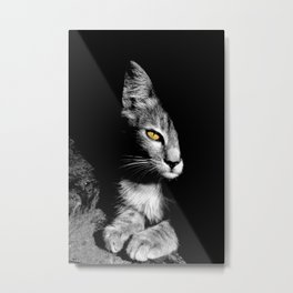 Looking at You Metal Print
